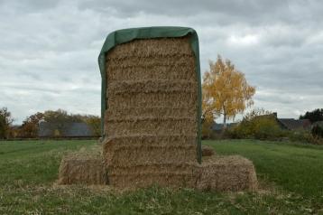 Agrarlandschaft4